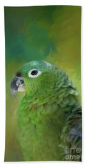Turquoise-fronted Amazon Beach Sheet by Eva Lechner
