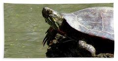 Turtle Bask Beach Towel