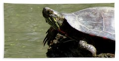 Turtle Bask Beach Sheet