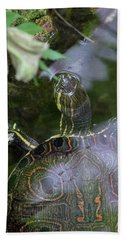 Beach Towel featuring the photograph Turtle Getting Some Air by Raphael Lopez