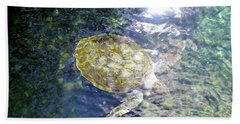Beach Towel featuring the photograph Turtle Water Glide by Francesca Mackenney