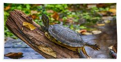 Turtle Yoga Beach Sheet
