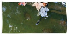 Beach Towel featuring the photograph Turtles And Leaves In The Water by Irina Sztukowski