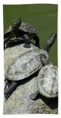 Turtles At A Temple In Narita, Japan Beach Towel