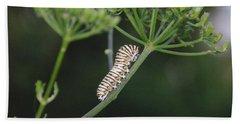 Twilight Caterpillar Beach Sheet