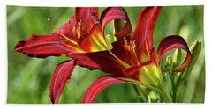 Beach Towel featuring the photograph Twin Daylilies by Sandy Keeton