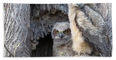 Beach Towel featuring the photograph Twin Owls by Jeanette Oberholtzer