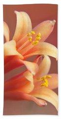 Twin Yucca Flowers Beach Sheet