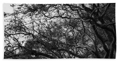 Twirling Branches Beach Sheet