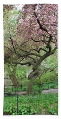 Twisted Cherry Tree In Central Park Beach Towel
