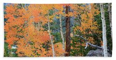 Beach Towel featuring the photograph Twisted Pine by David Chandler