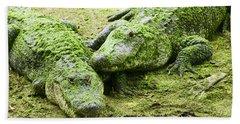 Two Alligators Beach Towel