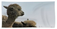 Two Alpaca Beach Towel