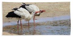 Two Drinking White Storks Beach Sheet