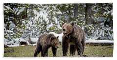 Two Grizzly Bears Beach Towel