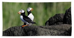 Two Horned Puffins Beach Towel