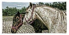 Two Horses In A Field Beach Sheet