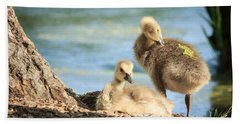 Two Little Goslings Beach Towel