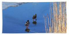 Two Mallards On Ice Beach Towel