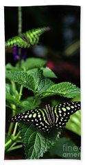 Two Tailed Jay Butterflies- Graphium Agamemnon Beach Towel