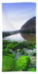 Beach Sheet featuring the photograph Two Times by Edgar Laureano