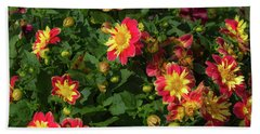 Two Tone Dahlias Beach Towel