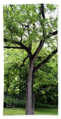 Two Tone Tree Beach Towel