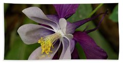 Beach Towel featuring the photograph Two Toned Columbine by Jean Noren