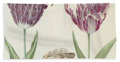 Two Tulips A Shell And A Grasshopper Beach Towel