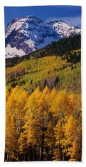 Uncompahgre National Forest Co Usa Beach Towel