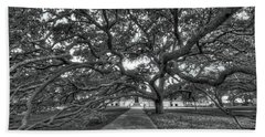 Under The Century Tree - Black And White Beach Sheet