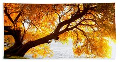 Beach Towel featuring the photograph Under The Yellow Tree by Viviana  Nadowski