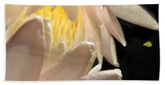Underwater Lily 4 Beach Towel