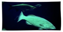 Underwater Lushness Beach Towel by William Horden