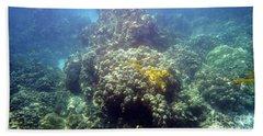 Underwater World Beach Sheet