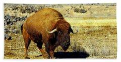 Unique Bull Buffalo II Beach Towel