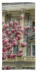 United States Capitol - Magnolia Tree Beach Towel by Marianna Mills