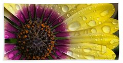 Daisy Up Close  Beach Towel