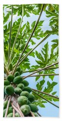 Up The Papaya Beach Towel
