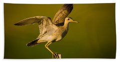Upland Sandpiper On Steel Post Beach Towel
