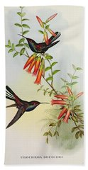 Urochroa Bougieri Beach Towel by John Gould