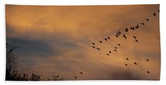 V Formation At Sunset  Beach Sheet by Kathy M Krause