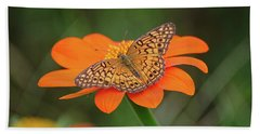 Variegated Fritillary On Flower Beach Towel by Ronda Ryan