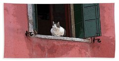 Venetian Cat In Window Beach Towel