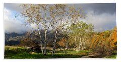 Ventura River Preserve Winter 2017 Beach Towel