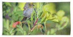 Verdin 5883-092517-1 Beach Towel