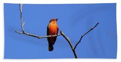 Vermillion Flycatcher Beach Towel