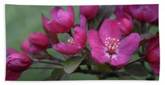 Beach Towel featuring the photograph Vibrant Blooms by Ann Bridges