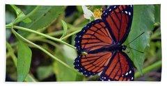 Viceroy Butterfly Beach Sheet