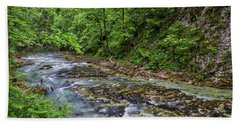 Beach Towel featuring the photograph View In Vintgar Gorge - Slovenia by Stuart Litoff